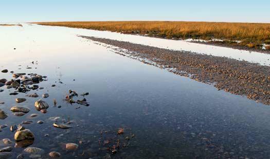 Vadehavet (foto: REL, 2007)