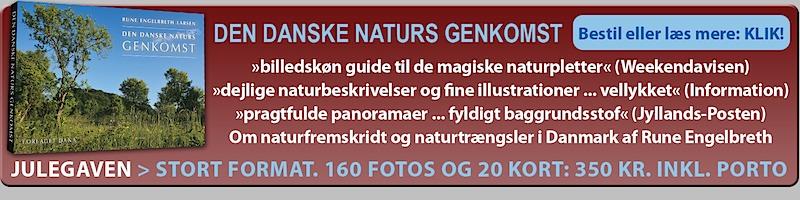 Bestil ny bog af Rune Engelbreth Larsen: Den danske naturs genkomse